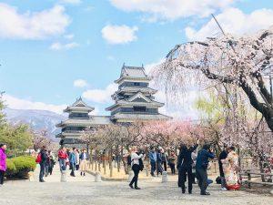 美しい日本文化に多国籍のみなさんがカメラを構えていました